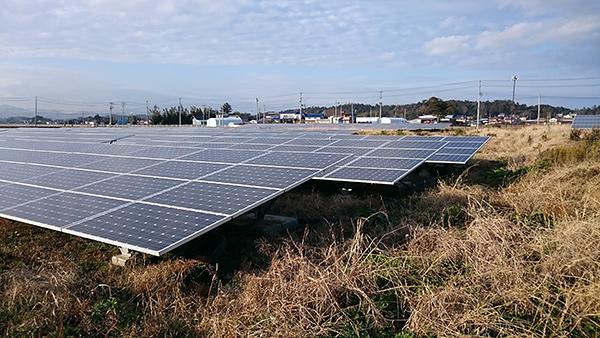 Photo: Ground-mounted solar panels