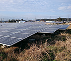 Ground-mounted solar panels